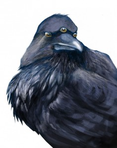 Three-eyed raven is staring at you!